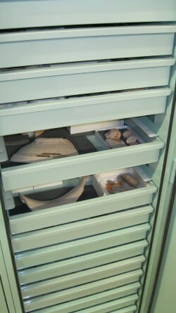 Bolton Museum Egyptology Cabinets